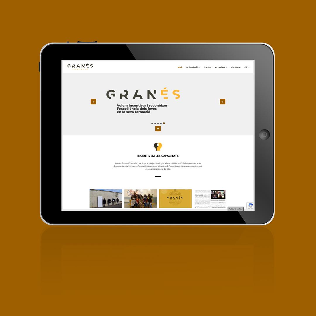 Adaptació De La Web De Granés Fundació Per A Que Sigui Accessible